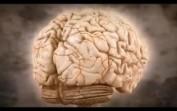 Zihin Oyunları-Stres Testi